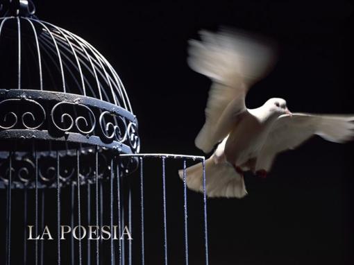 la-poesia-di-salvatore-maresca-serra